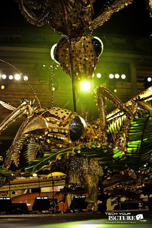 dimanche_gras_kings_2011-66