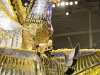 dimanche_gras_kings_2011-27