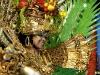 dimanche_gras_queens_2011-13